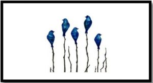 birds of a feather -member show sept 2019
